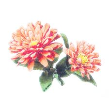 product_photo_2012_1