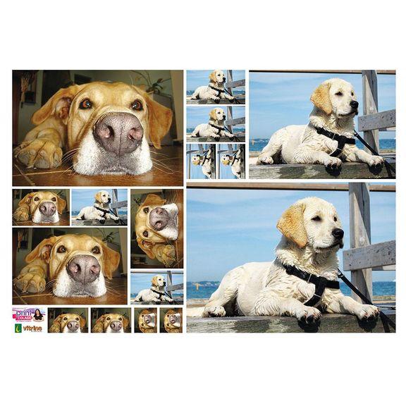 Risco-Impresso-Print-Collage-30x42cm_3895_1