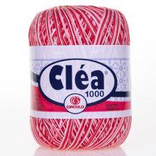 002796_1_Fio-Clea-1000-Multicolor